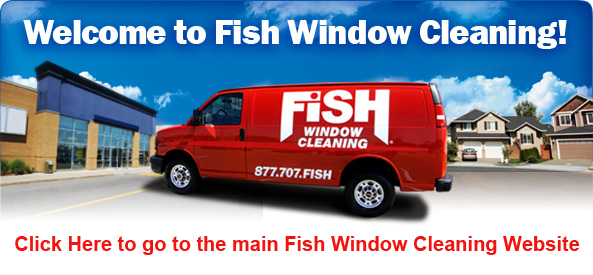 Fish Window Cleaning
